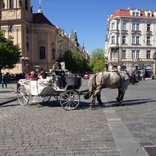 Picture of Horse & Carriage