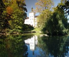 Picture of Breznice Chateau