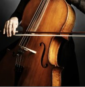 Picture for category violoncellist