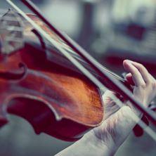 Picture of Violinist Dana Jelinkova