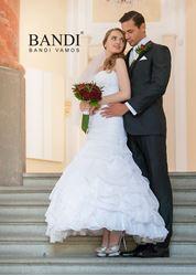 Picture of Men's Suits Bandi