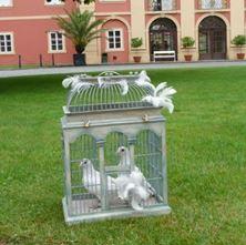 Obrázek Svatební holubi