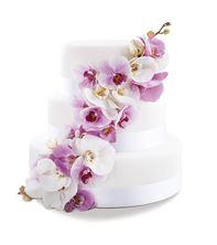 Obrázek Svatební dort Orchid Dream