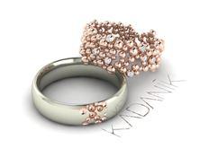 Obrázek Snubní prsteny Adel