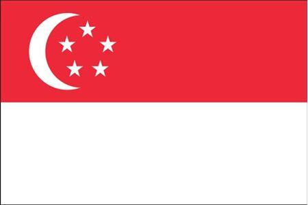 Obrázek z Singapur