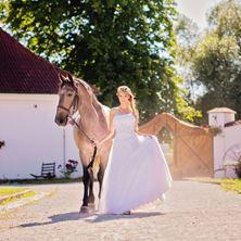 Picture of Alena Sreflova Photo