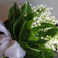 Obrázek Kytice pro nevěstu - Konvalinky