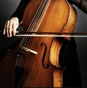 Obrázek pro kategorii Violončelista